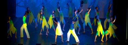 "Principal Emerging Performers in ""Tere Bin."""